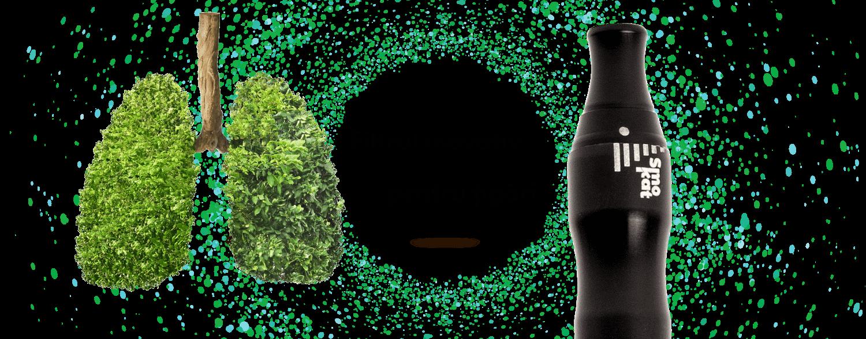 polmone verde1 1